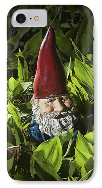 Garden Gnome No 0065 Phone Case by Randall Nyhof