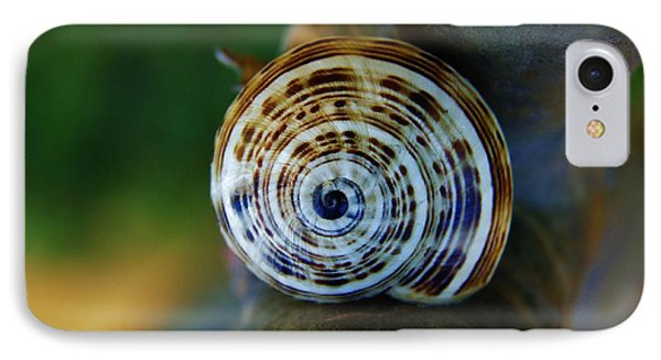 IPhone Case featuring the photograph Garden Snail On Frangipani  by Werner Lehmann