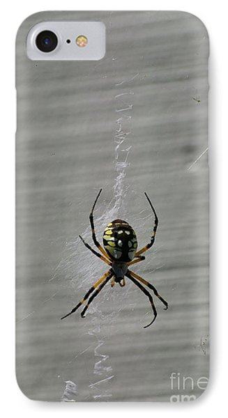 IPhone Case featuring the photograph Garden Spider by Tannis  Baldwin