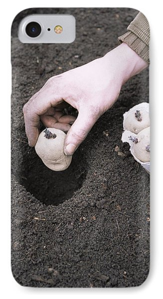 Gardener Planting Chitted Potatoes Phone Case by Maxine Adcock