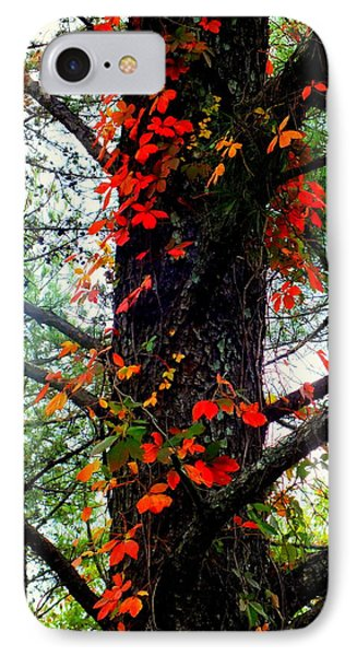 Garland Of Autumn Phone Case by Karen Wiles