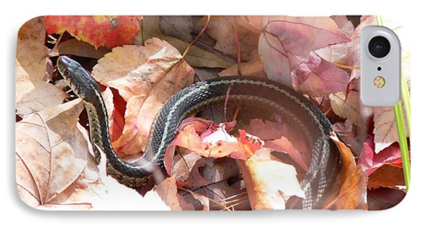 Garter Snake IPhone Case