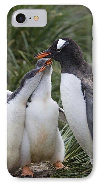 Gentoo Penguin Parent And Two Chicks Phone Case by Suzi Eszterhas