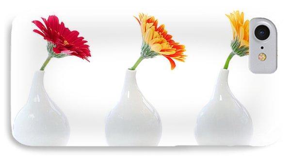 Gerbera Flowers In Vases IPhone Case by Elena Elisseeva