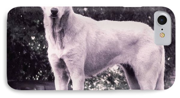 IPhone Case featuring the photograph Ghost The Wolf by Maria Urso