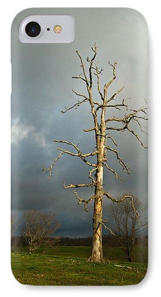 Ghost Tree Phone Case by Douglas Barnett