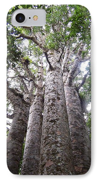 IPhone Case featuring the photograph Giant Kauri Grove by Peter Mooyman