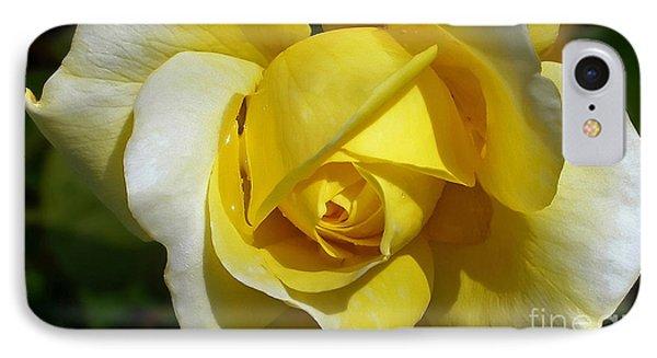 Gina Lollobrigida Rose Phone Case by Kaye Menner