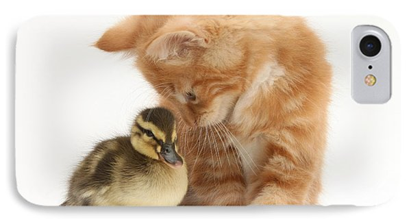 Ginger Kitten And Mallard Duckling Phone Case by Mark Taylor