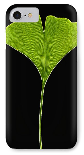 Ginkgo Leaf Phone Case by Piotr Naskrecki