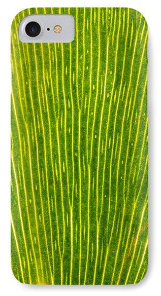 Ginko Tree Leaf Phone Case by Steve Gadomski