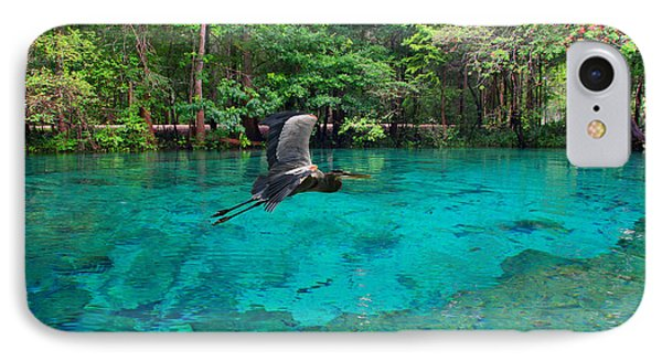 Ginnie Springs IPhone Case