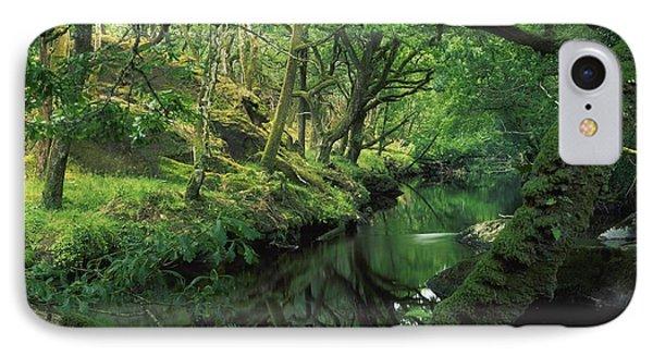 Glengarriff River, County Cork, Ireland IPhone Case by Richard Cummins