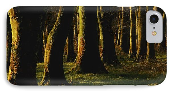 Glenville Woods, County Cork, Ireland IPhone Case by Richard Cummins