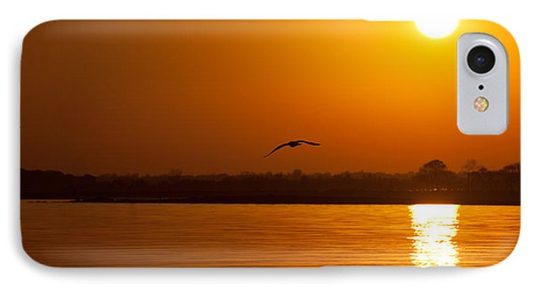 Glides Into Evening Phone Case by Karol Livote