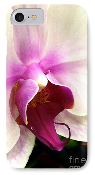 Glorious Orchid Phone Case by Renee Trenholm