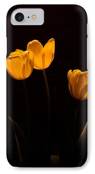 IPhone Case featuring the photograph Glowing Tulips by Ed Gleichman
