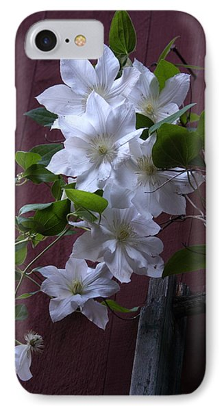 Glowing White Clematis IPhone Case