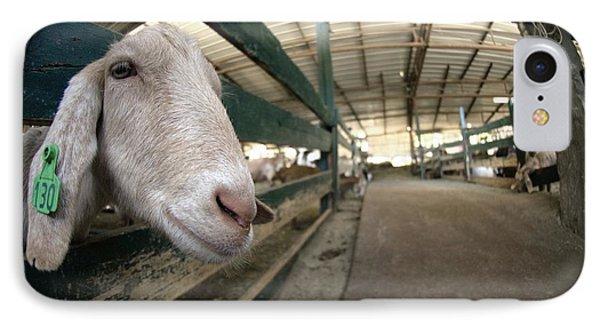 Goat Farming Phone Case by Photostock-israel