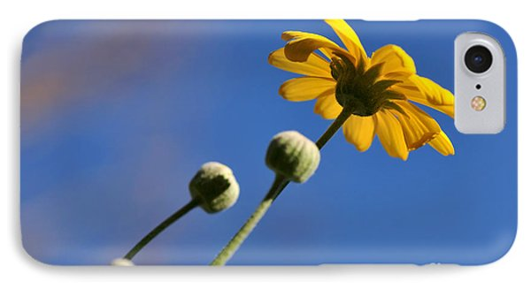 Golden Daisy On Blue IPhone Case by Kaye Menner