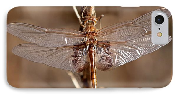 Golden Dragonfly Wings Phone Case by Carol Groenen