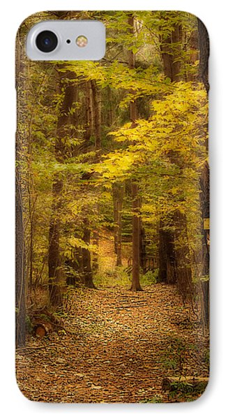 Golden Forest IPhone Case by Cindy Haggerty