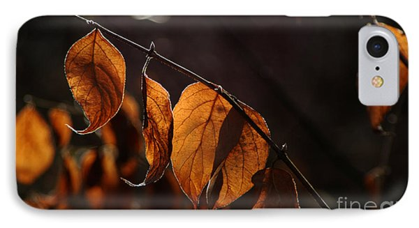 IPhone Case featuring the photograph Golden Leaves by Vilas Malankar