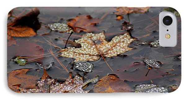 Golden Maple Dew Drops IPhone Case