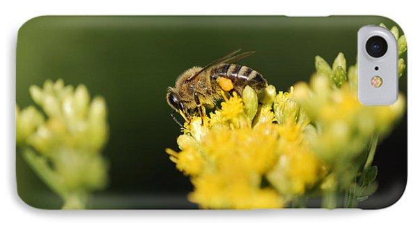 Honeybee iPhone 7 Case - Golden Moment by Susan Capuano