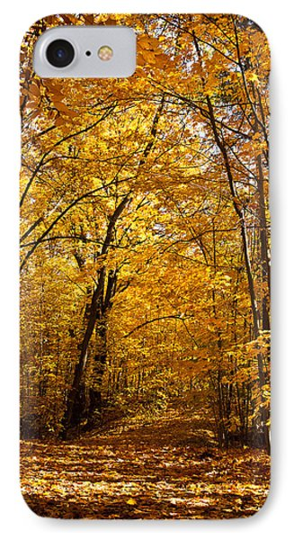 Golden Path Phone Case by Kamil Swiatek