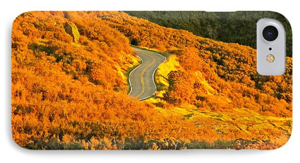 Golden Road IPhone Case by Michael Cinnamond