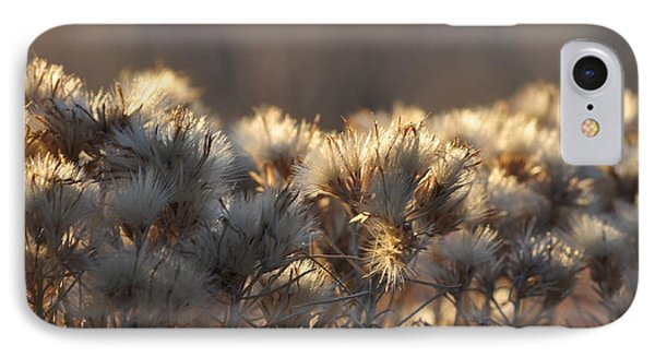 IPhone Case featuring the photograph Gone To Seed by Fran Riley