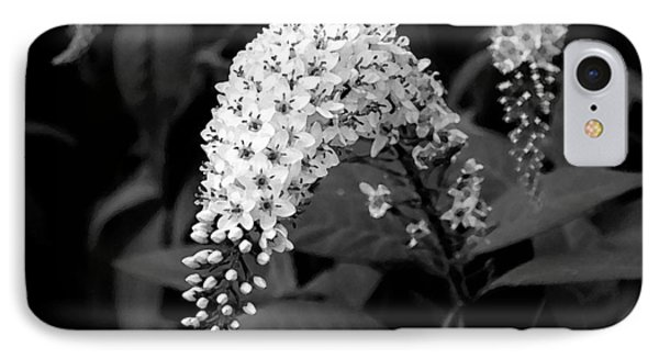 IPhone Case featuring the photograph Gooseneck Loosestrife by Michael Friedman