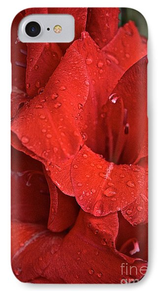 Gorgeous Glads Phone Case by Susan Herber