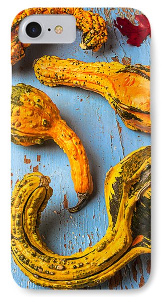 Gourds On Wooden Blue Board Phone Case by Garry Gay