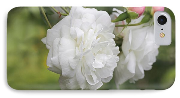 Graceful White Rose And Pink Rosebuds Phone Case by Jennie Marie Schell