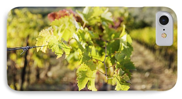 Grape Leaves IPhone Case by Jeremy Woodhouse