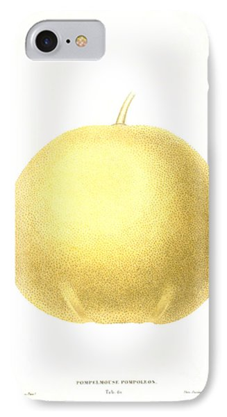 Grapefruit Phone Case by Granger