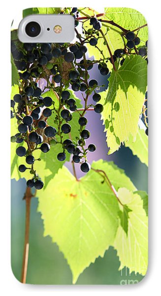 Grapes And Leaves Phone Case by Michal Boubin