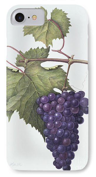 Grapes  Phone Case by Margaret Ann Eden