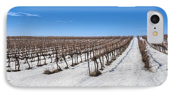 Grapevines In Snow Phone Case by Noam Armonn