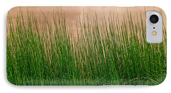 IPhone Case featuring the photograph Grass And Stucco by David Pantuso
