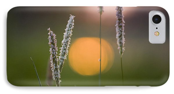 Grass Blooming Phone Case by Heiko Koehrer-Wagner