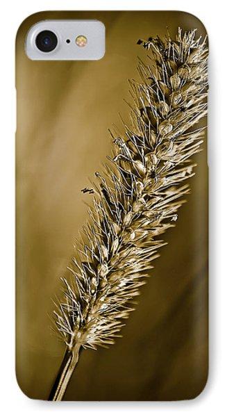 Grass Seedhead Phone Case by  Onyonet  Photo Studios