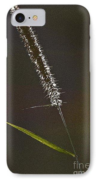 Grass Spikelet Phone Case by Heiko Koehrer-Wagner