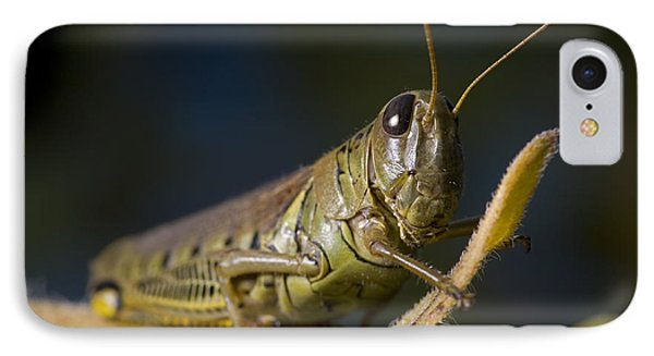 IPhone Case featuring the photograph Grasshopper by Art Whitton