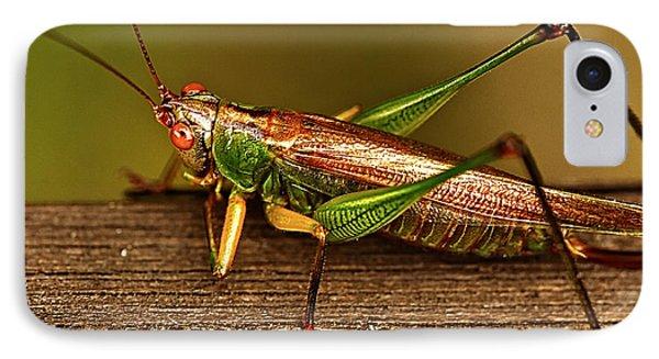Grasshopper Phone Case by Linda Tiepelman