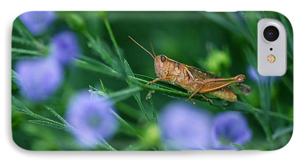 Grasshopper Phone Case by Mike Grandmailson