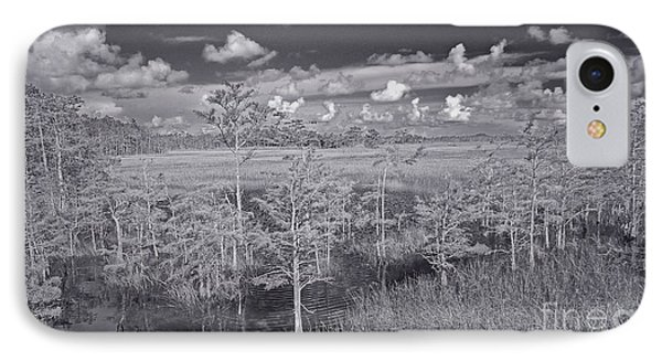 Grassy Waters 3 Bw IPhone Case by Larry Nieland