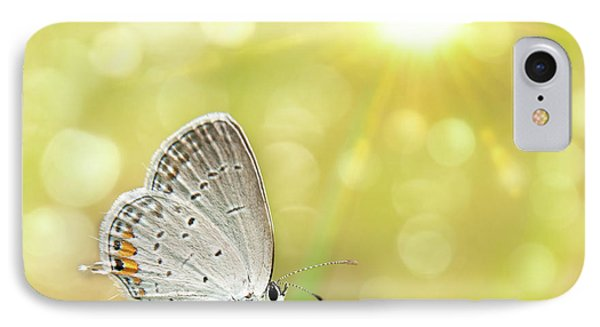Gray Hairstreak Butterfly  IPhone Case